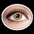 Goldene Kontaktlinsen (gold Sparkle)