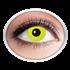 Kontaktlinsen Gelb (yellow Crow Eye)